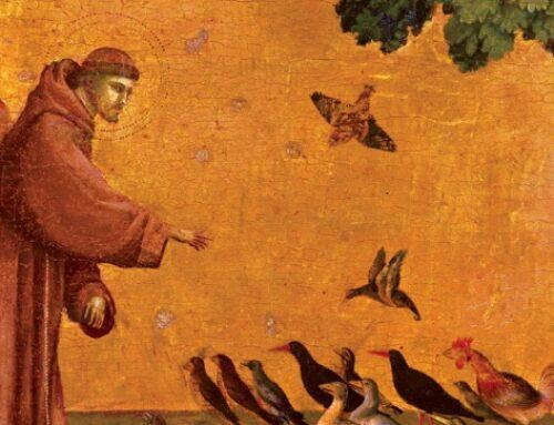 Tituliniai atlaidai Vilniaus Šv. Pranciškaus Asyžiečio parapijoje